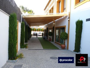 Evento-Procolor-Pinturom-Jardines-del-Naranjo-Córdoba-34