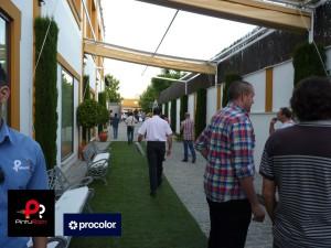 Evento-Procolor-Pinturom-Jardines-del-Naranjo-Córdoba-30